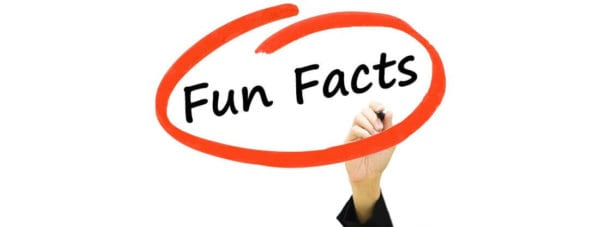 fun facts about massage - banner