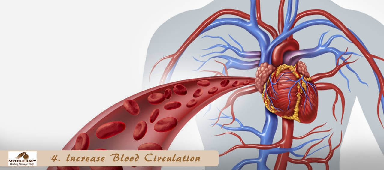 Increase blood circulation